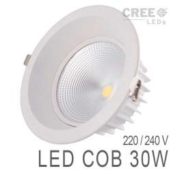 Down Light LED COB 30W