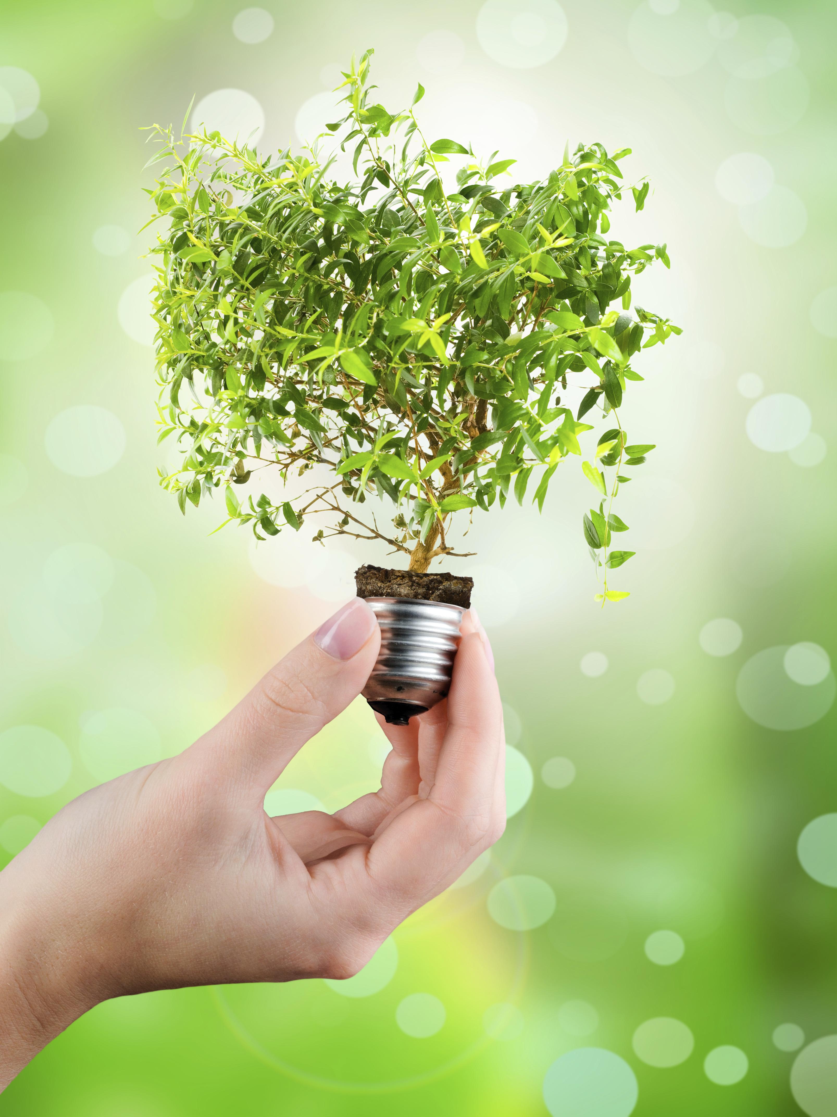 LED économie énergie