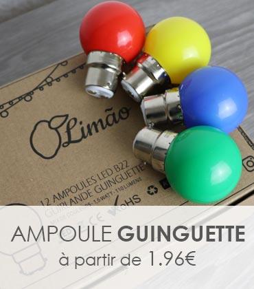 ampoule led guinguette B22